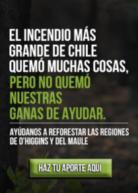 Reforestemos Chile